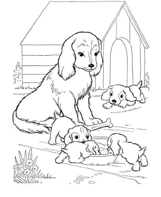 Открыток, картинки раскраски с собаками и щенками