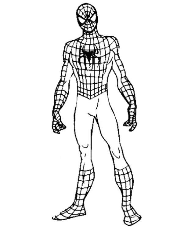 Раскраски Человек-паук