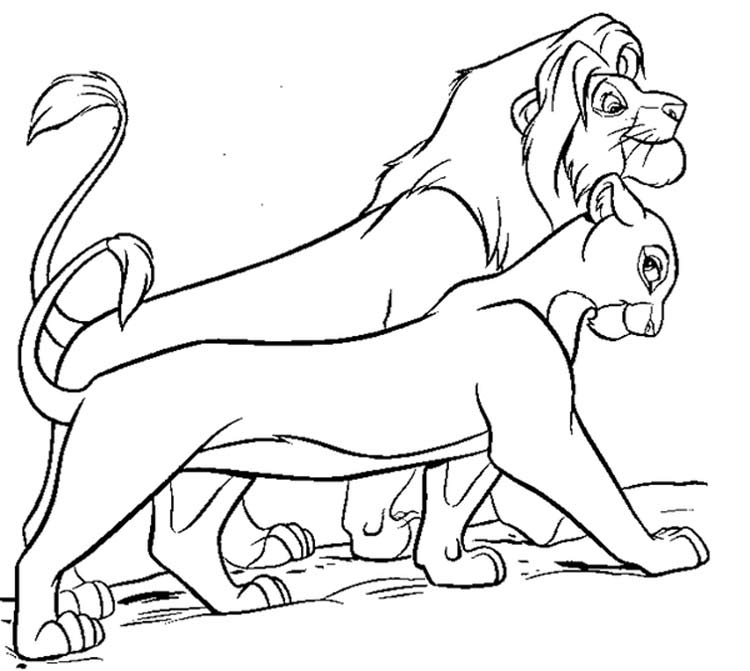 Раскраски король лев 2 киара