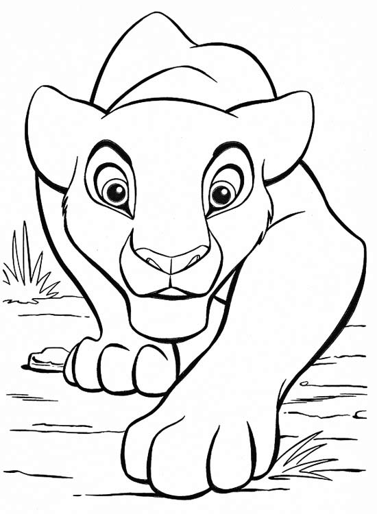Раскраски львицы