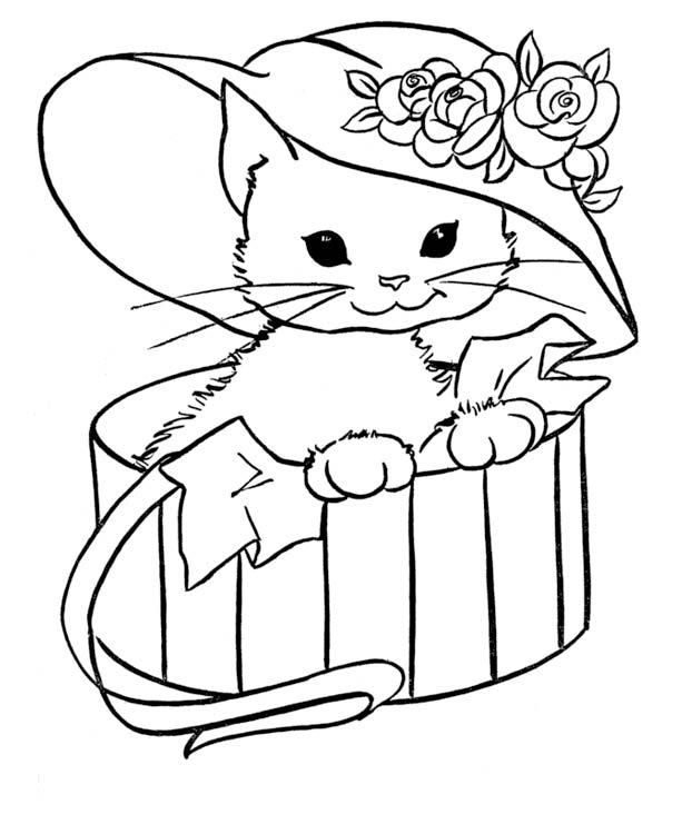 Игры с кошками и котятами раскраски