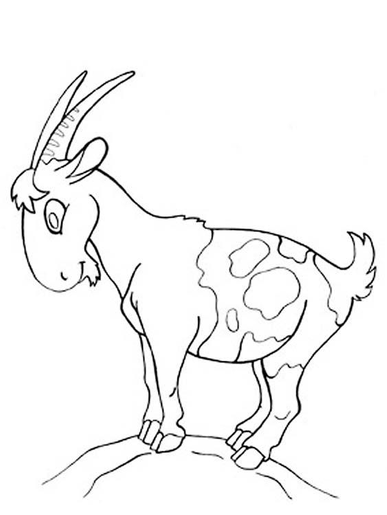 Раскраска года козы