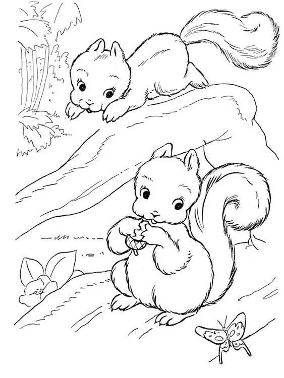Раскраска с животными онлайн