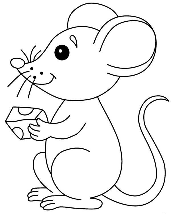 Мышка для малышей раскраски