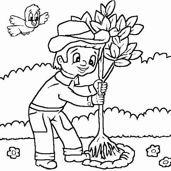 Кто сажает лес раскраска 4