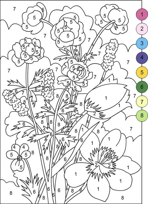 Раскраска цветок по цифрам