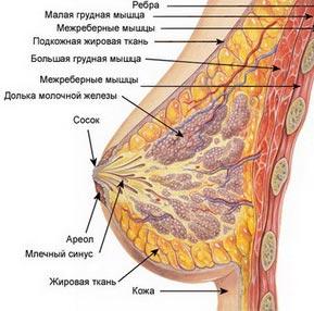 Двигается имплант в груди
