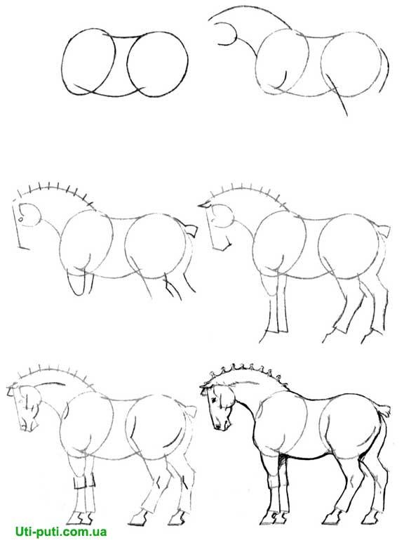 Название: Рисуем 50 лошадей Серия: Рисуем 50 Автор: Ли Эймис Издательство: поппури Год издания: 1999 Номер издания...