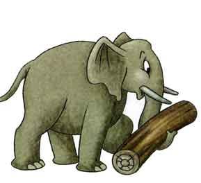 фото слона для детей