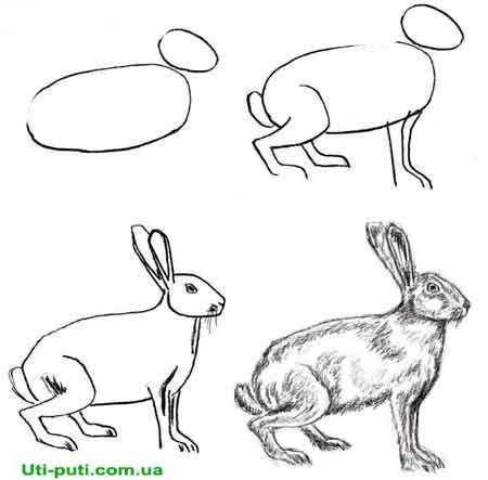 Как Рисовать Аниме Пошаговая Инструкция